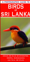 A photographic guide to Birds of Sri Lanka