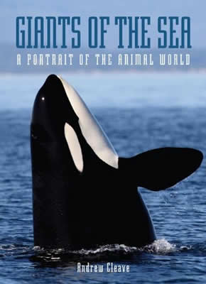 Giants Of The Sea : A Portrait Of The Animal World